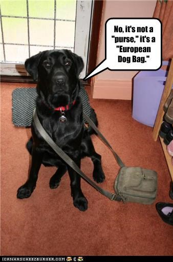"No, it's not a ""purse,"" it's a ""European Dog Bag."""