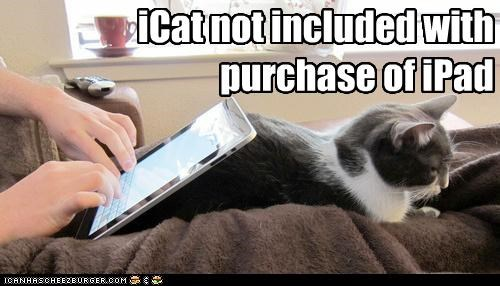 iCat not included with purchase of iPad