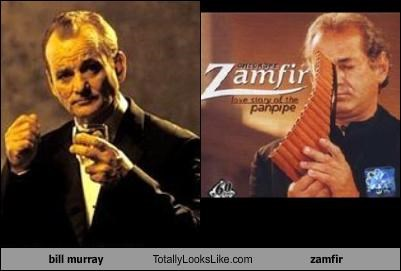 bill murray Totally Looks Like zamfir