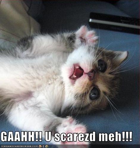 GAAHH!! U scarezd meh!!!