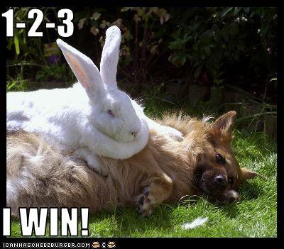 1-2-3  I WIN!