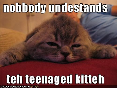 nobbody undestands  teh teenaged kitteh