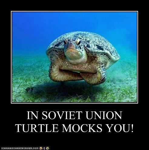 IN SOVIET UNION TURTLE MOCKS YOU!