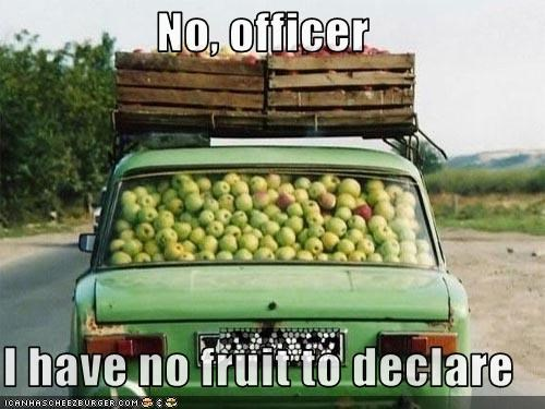 No, officer  I have no fruit to declare