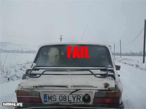 car,cattle,cow,failboat,g rated,window