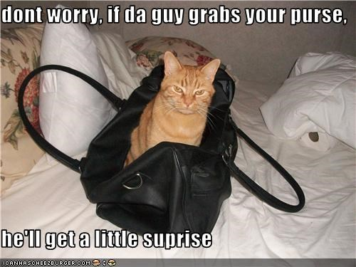 dont worry, if da guy grabs your purse,  he'll get a little suprise