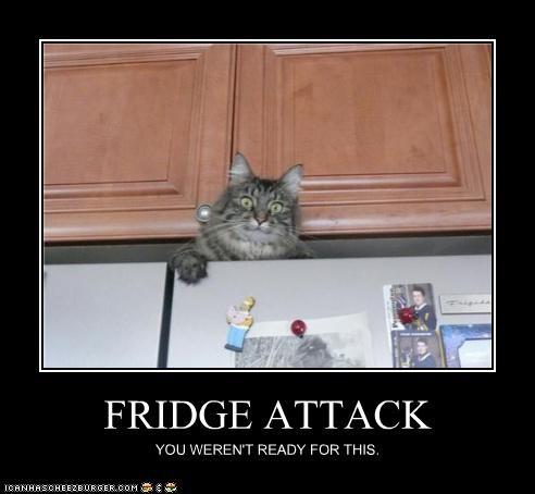 FRIDGE ATTACK