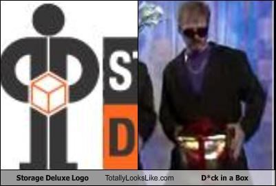 Storage Deluxe Logo Totally Looks Like D*ck in a Box