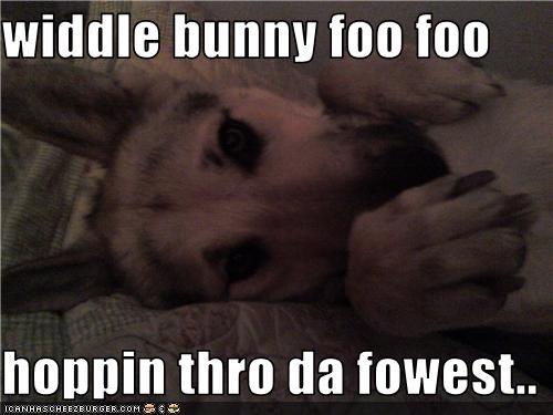 widdle bunny foo foo  hoppin thro da fowest..