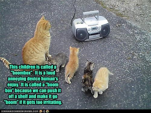 "This children is called a ""boombox"".  It is a loud annoying device human's enjoy.  It is called a ""boom box"" because we can push it off a shelf and make it go ""boom"" if it gets too irritating."