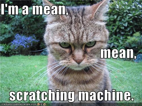 I'm a mean, mean, scratching machine.