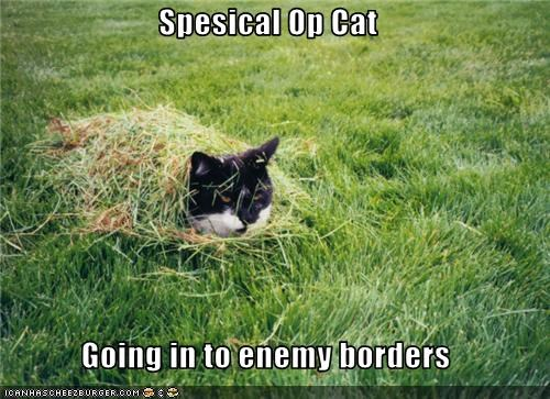 Spesical Op Cat  Going in to enemy borders