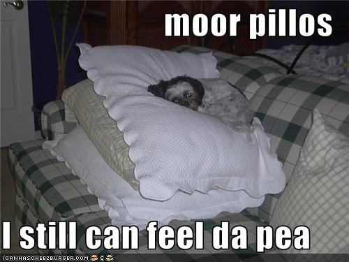 moor pillos  I still can feel da pea