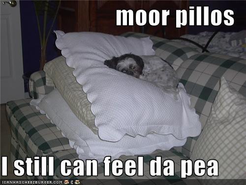 moor pillos  I still can feel da pea