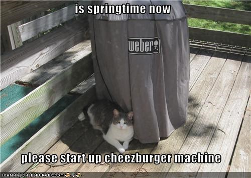 is springtime now  please start up cheezburger machine