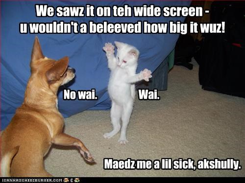 We sawz it on teh wide screen