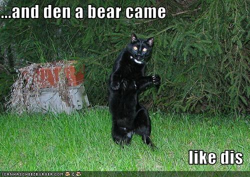 ...and den a bear came  like dis