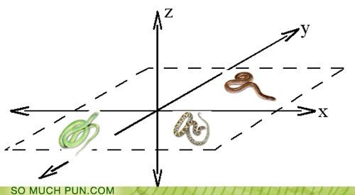 graphs,math,planes,pun,school,snakes