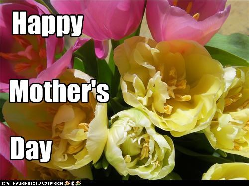 Happy Mother's day to all