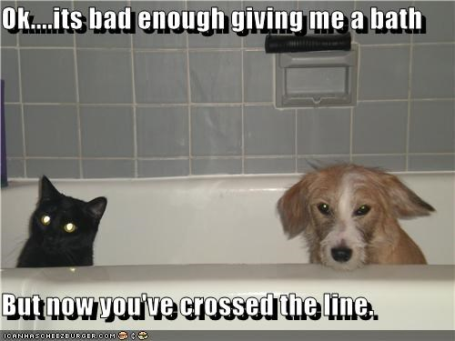 Ok....its bad enough giving me a bath  But now you've crossed the line.