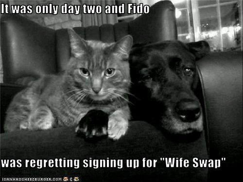"It was only day two and Fido  was regretting signing up for ""Wife Swap"""
