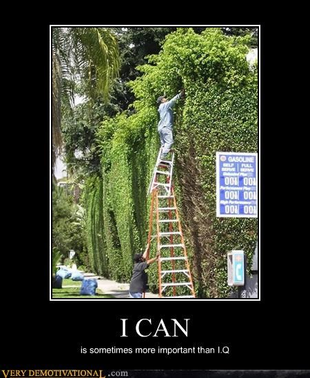 bravery,FAIL,idiots,IQ,ladders,yard work