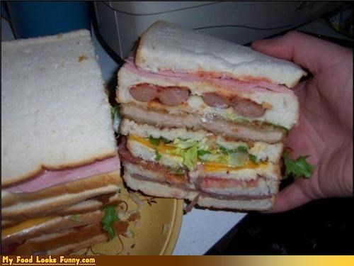 I Like to Call This a FOOD SAMMICH. So Much Food in That Sammich!