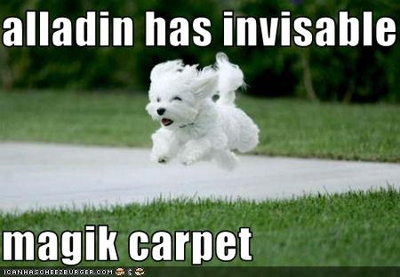 alladin has invisable  magik carpet