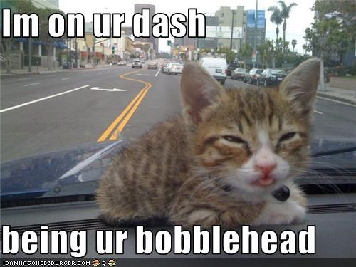 Im on ur dash  being ur bobblehead