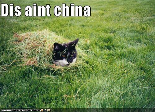 Dis aint china