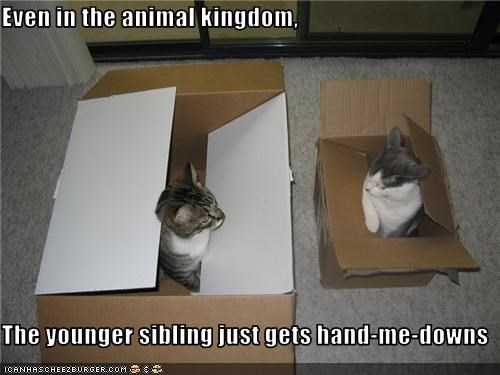 Even in the animal kingdom,  The younger sibling just gets hand-me-downs
