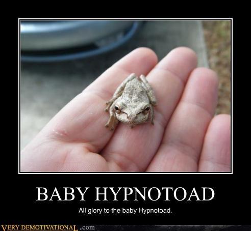 baby,wtf,hypnotoad