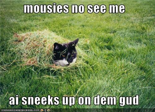 mousies no see me  ai sneeks up on dem gud