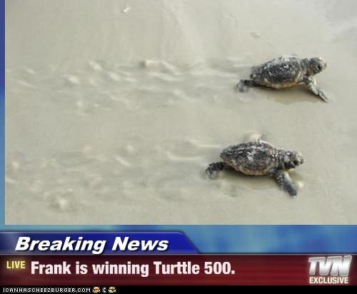 Breaking News - Frank is winning Turttle 500.