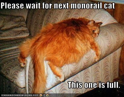Please wait for next monorail cat  This one is full.