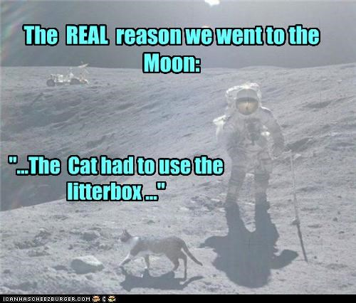 The  REAL  reason we went to the Moon: