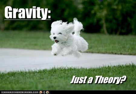 Gravity:  Just a Theory?
