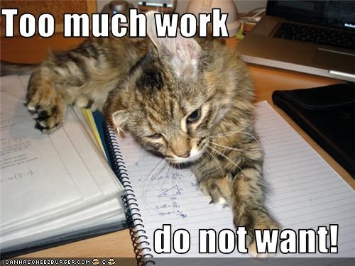 Too much work  do not want!