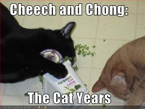 Cheech and Chong:  The Cat Years