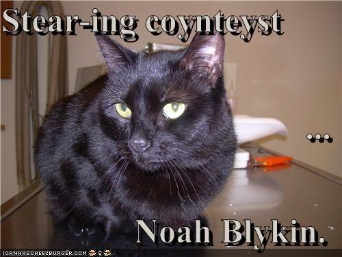 Stear-ing coynteyst  ... Noah Blykin.