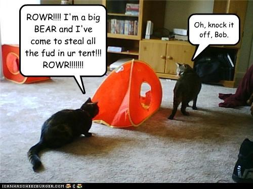 ROWR!!!! I'm a big BEAR and I've come to steal all the fud in ur tent!!! ROWR!!!!!!!