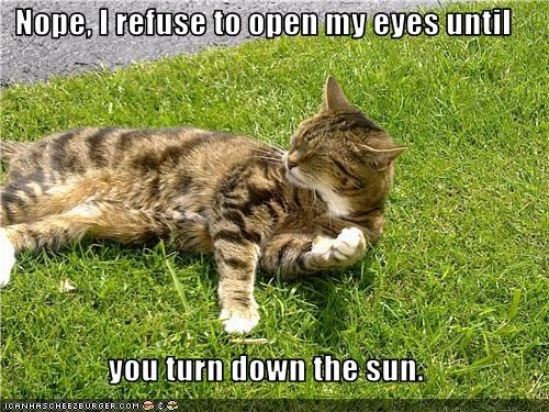 Nope, I refuse to open my eyes until   you turn down the sun.