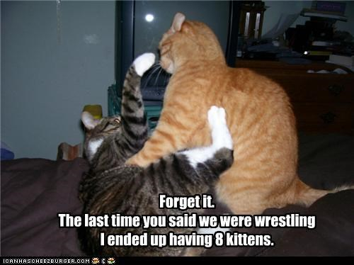Forget it. The last time you said we were wrestling  I ended up having 8 kittens.