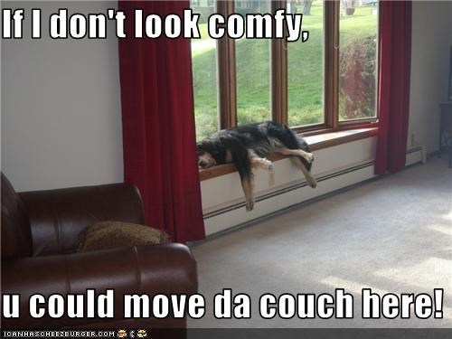 If I don't look comfy,  u could move da couch here!