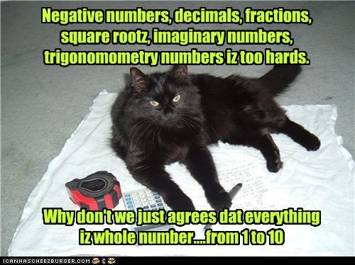 Negative numbers, decimals, fractions, square rootz, imaginary numbers, trigonomometry numbers iz too hards.