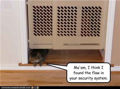 Ma'am, I think I found the flaw in your security system.