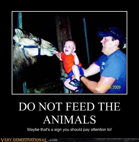 animals,Babies,bad parenting,FAIL,idiots,lost an arm,Terrifying,whoops
