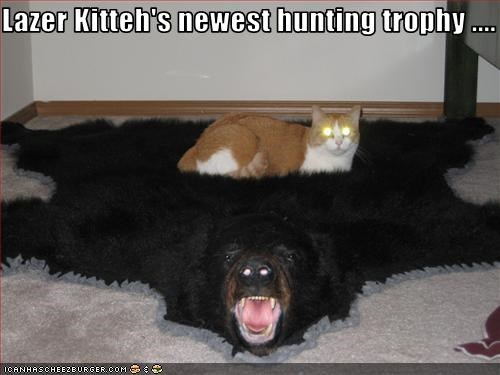 Lazer Kitteh's newest hunting trophy ....