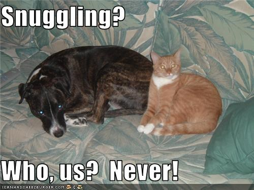 Snuggling?   Who, us?  Never!