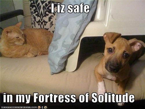 I iz safe  in my Fortress of Solitude